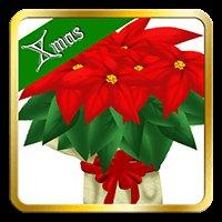 クリスマスが今年もやって来た!