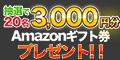Amazonギフト券プレゼントキャンペーン【ASSIST】