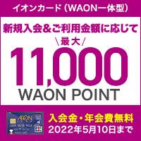 イオンカード(WAON一体型)のポイント対象リンク