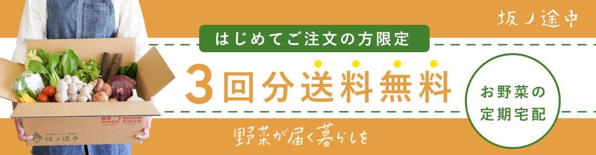 【坂ノ途中】うれしいおまけ付き!旬のお野菜セット定期宅配